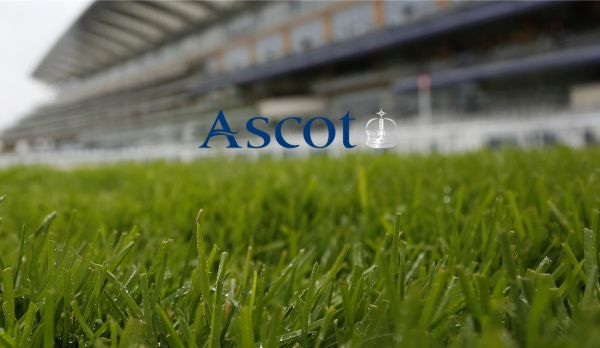 Sagaro Stakes Raceday am 02.05.
