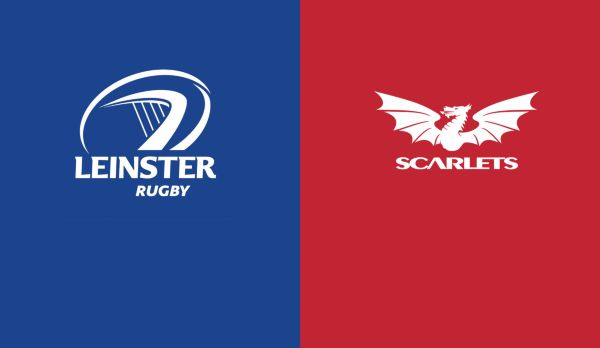 Leinster - Scarlets am 25.01.