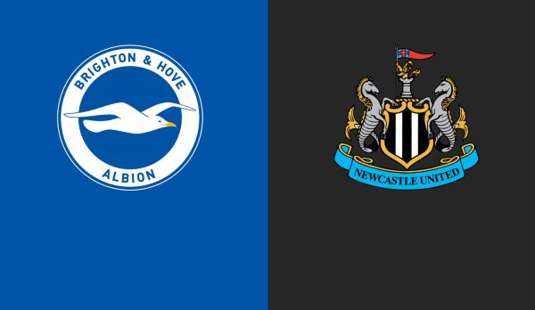 Brighton - Newcastle am 27.04.