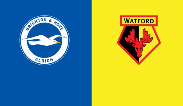Brighton - Watford (DELAYED) am 23.12.