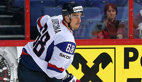 Slowakischer Nationalspieler jetzt in der DEL aktiv