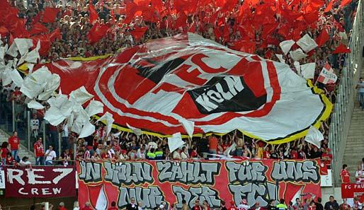 Wechselgerüchte 1.Fc Köln