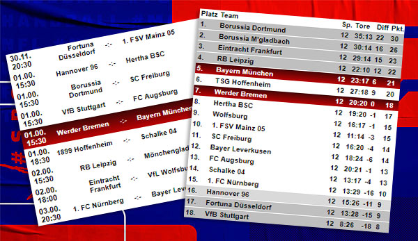 Bundesliga Ergebnisse 12 Spieltag