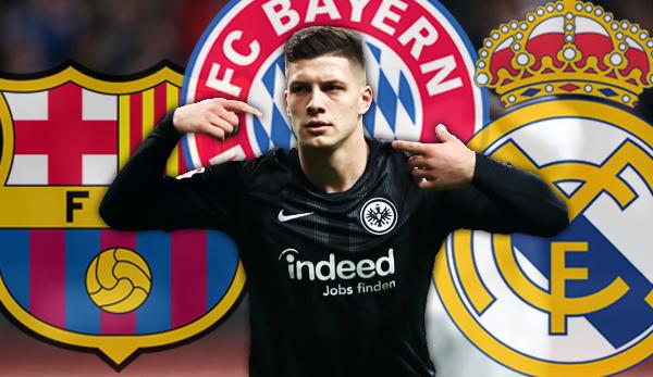 Luka Jovic - Alle News, Gerüchte und Spekulationen um den Stürmer von Eintracht Frankfurt