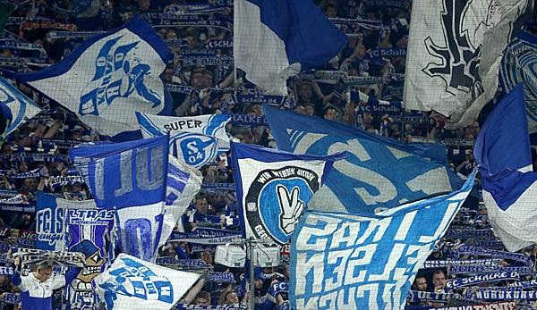 Fc Schalke 04 Transfers