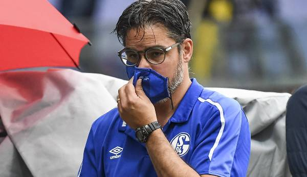 David Wagner n'a pas gagné avec Schalke 04 en 15 matchs.