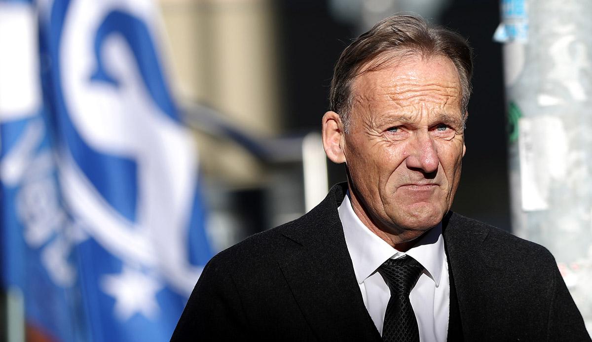 BVB: Hans-Joachim Watzke verteilt Lob an Jadon Sancho, Mo Dahoud und Edin Terzic - SPOX