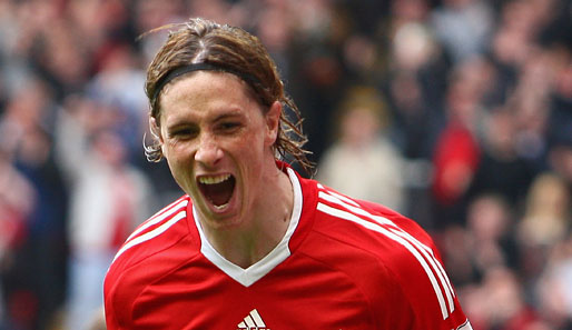 Fussball, Liverpool, Fernando, Torres, Premier League