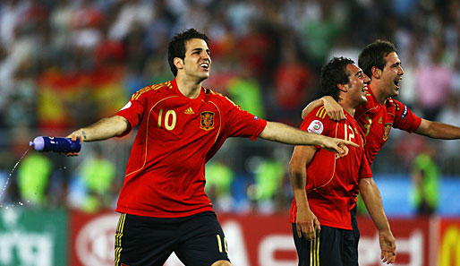 Fabregas, Comeback, International, WM 2010, Spanien