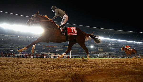 California Chrome siegte beim Dubai World Cup unter Jockey Victor Espinoza