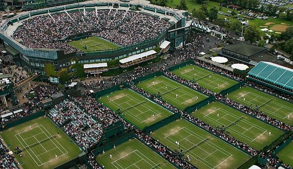 wimbledone tennis