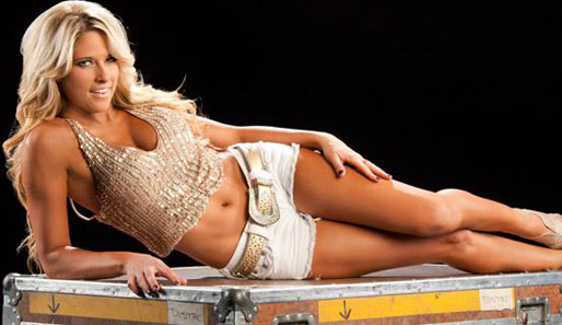 Noch nie war es wohl so angenehm, eine Kiste zu sein, wie in diesem Moment. Kelly Kelly debütierte in der WWE übrigens als exhibitionistische Stripperin